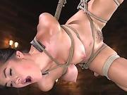 Sexy bdsm lover masturbates to an intense orgasm while restrained