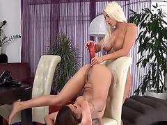Cuddly czech girls spread their asses with anal plug and monster dongs